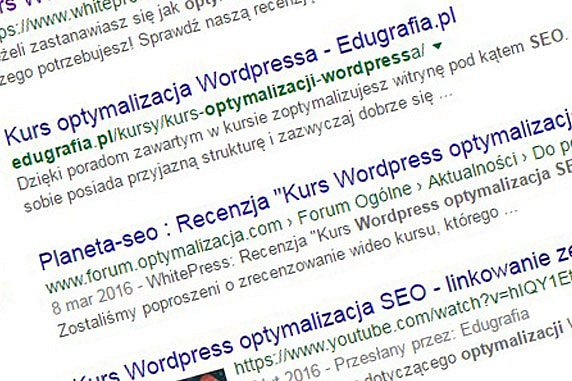 Kurs Wordpress SEO